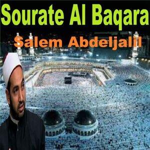 Salem Abdeljalil 歌手頭像