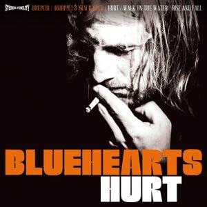 Bluehearts 歌手頭像