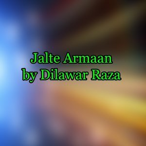 Dilawar Raza 歌手頭像
