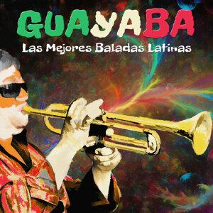 La Antigua Sonora 歌手頭像