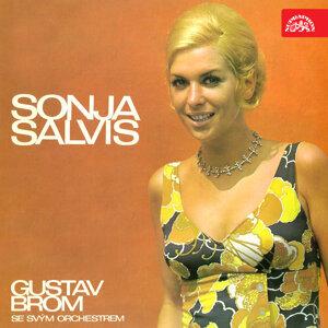 Sonja Salvis 歌手頭像