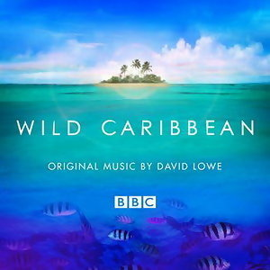 Wild Caribbean - Original Music By David Lowe 歌手頭像