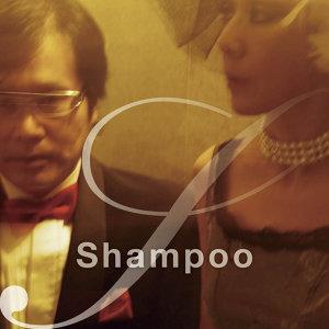 Shampoo アーティスト写真