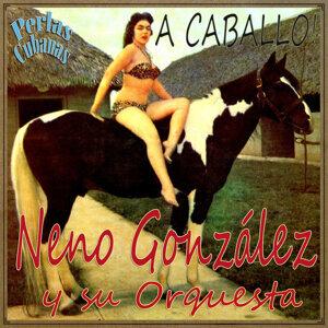 Neno González Y Su Orquesta アーティスト写真
