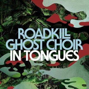 Roadkill Ghost Choir 歌手頭像