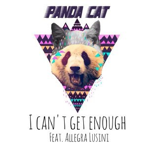 Pandacat 歌手頭像