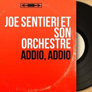 Joe Sentieri et son orchestre アーティスト写真