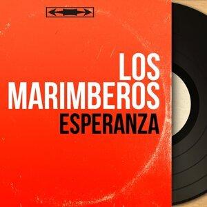 Los Marimberos アーティスト写真
