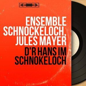 Ensemble Schnockeloch, Jules Mayer アーティスト写真