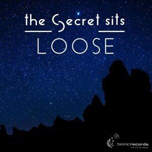 The Secret Sits 歌手頭像