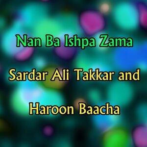 Sardar Ali Takkar, Haroon Baacha アーティスト写真