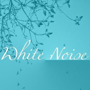 Real White Noise, Spa Therapist, The Retreats, The Fountains 歌手頭像