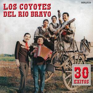 Los Coyotes Del Río Bravo アーティスト写真