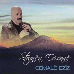 Cemalê Ezîz 歌手頭像