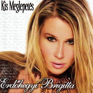 Erdőhegyi Brigitta 歌手頭像