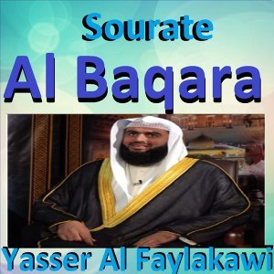 Yasser Al Faylakawi 歌手頭像