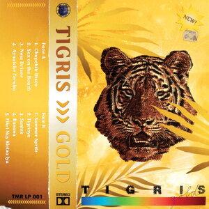 Tigris 歌手頭像