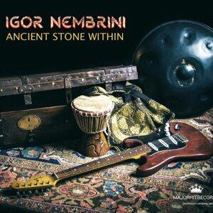 Igor Nembrini 歌手頭像