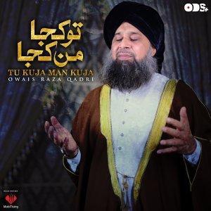 Owais Raza Qadri 歌手頭像