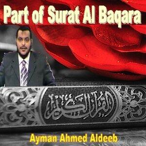 Ayman Ahmed Aldeeb 歌手頭像
