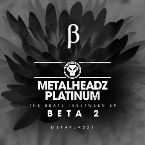 Beta 2 歌手頭像
