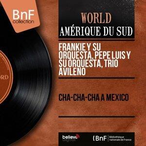 Frankie y Su Orquesta, Pepe Luis y Su Orquesta, Trio Avileño 歌手頭像