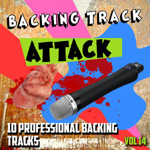 The Backing Track Professionals 歌手頭像