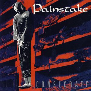 Painstake 歌手頭像