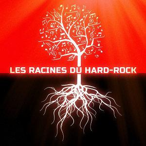 Les racines du Hard-Rock 歌手頭像