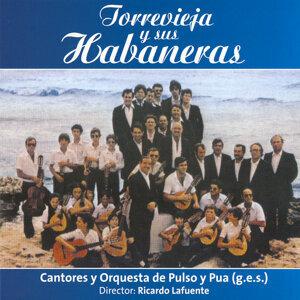Cantaores y Orquesta de pulso y pua (G.E.S) 歌手頭像