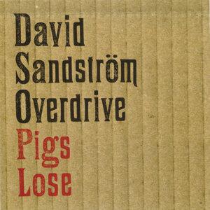 David Sandström Overdrive 歌手頭像