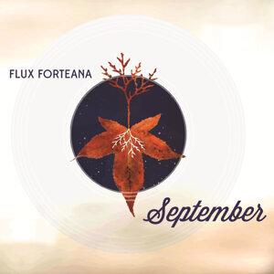 Flux Forteana アーティスト写真