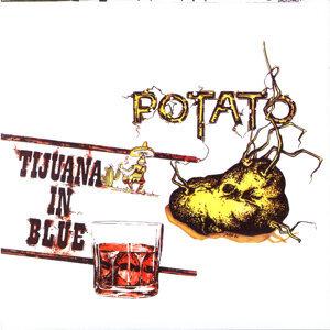 Potato + Tijuana In Blue アーティスト写真