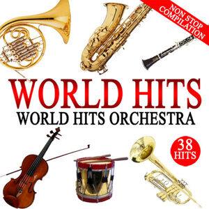 World Hits Orchestra 歌手頭像