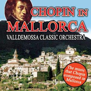 Valldemossa Classic Orchestra アーティスト写真