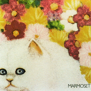 Marmoset 歌手頭像