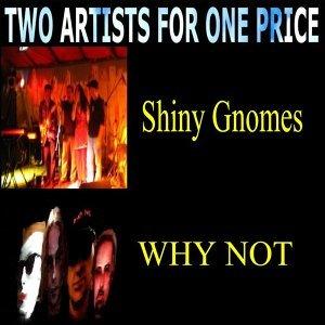 Shiny Gnomes, Why Not 歌手頭像