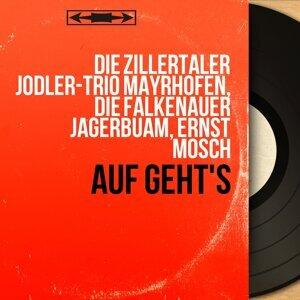 Die Zillertaler Jodler-Trio Mayrhofen, Die Falkenauer Jagerbuam, Ernst Mosch 歌手頭像
