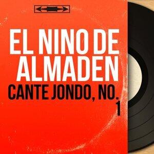 El Niño de Almaden アーティスト写真