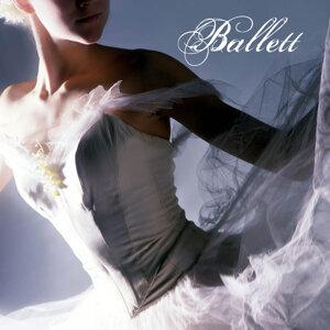 Ballett Sound アーティスト写真