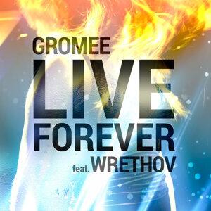 Gromee  feat. Wrethov