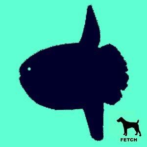 Sunfish アーティスト写真