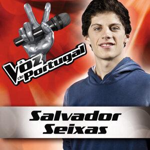 Salvador Seixas 歌手頭像