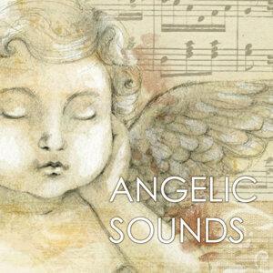 Angelic Music Academy 歌手頭像