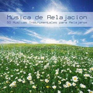 Musica de Relajación Academy