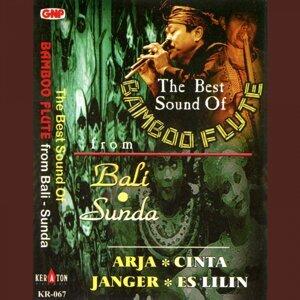 I Wayan Pater, L.S. Gelik, Sekehe Gong Werdhi Budaya アーティスト写真
