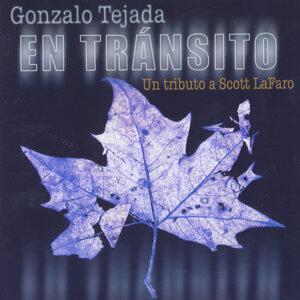 Gonzalo Tejada 歌手頭像