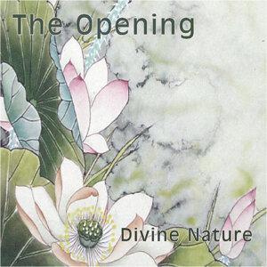 Divine Nature 歌手頭像