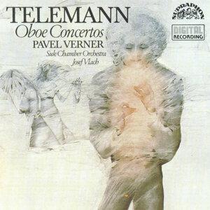 Pavel Verner 歌手頭像