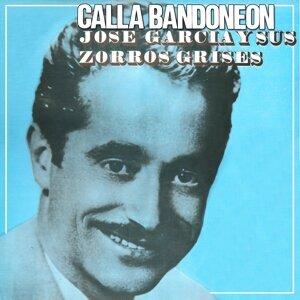 José García y sus Zorros Grises 歌手頭像
